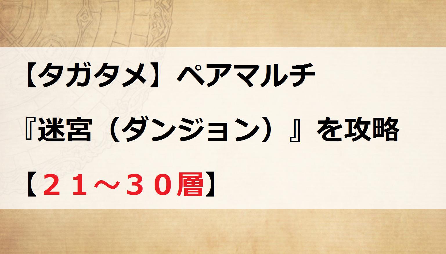 【タガタメ】ペアマルチ『迷宮(ダンジョン)』を攻略【21~30層】